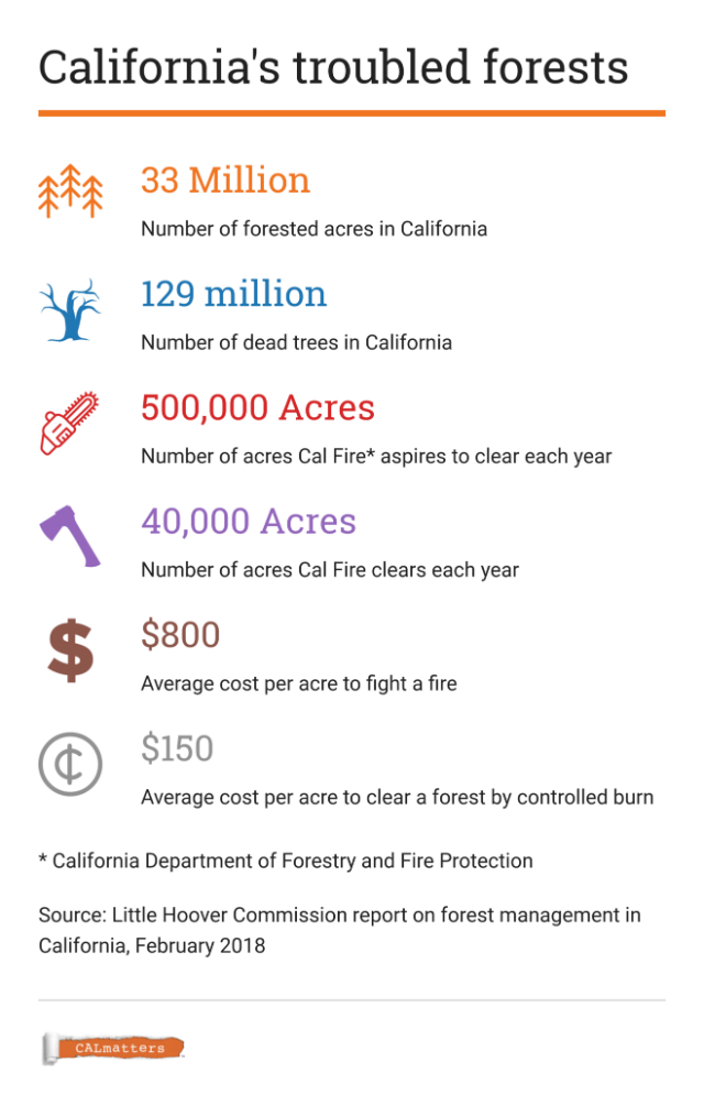 California forest facts