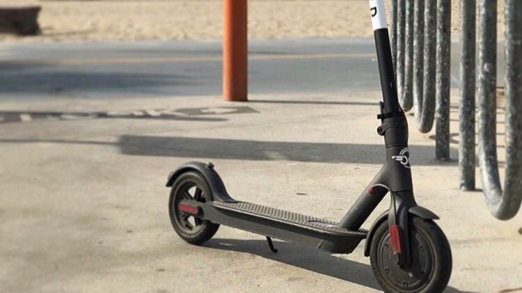 Electric Scooter Bird