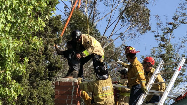 Firefighters pull man from chimney