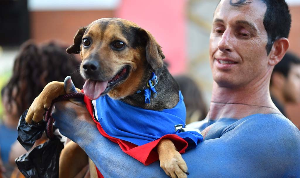 Matt Erhart as Superman with his trusty companion, Sampson, on Fifth Avenue near Comic -Con.