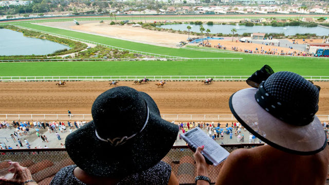 Patrons watching horses on opening day
