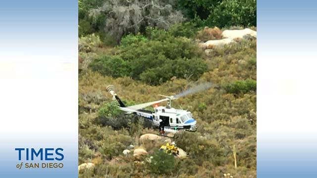 Sheriff's Department helicopter took part in rescue of driver.