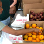 Volunteer bags fruit