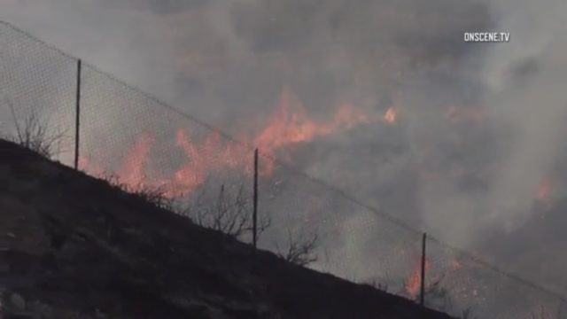 brush fire