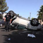 Birdland Car Flip