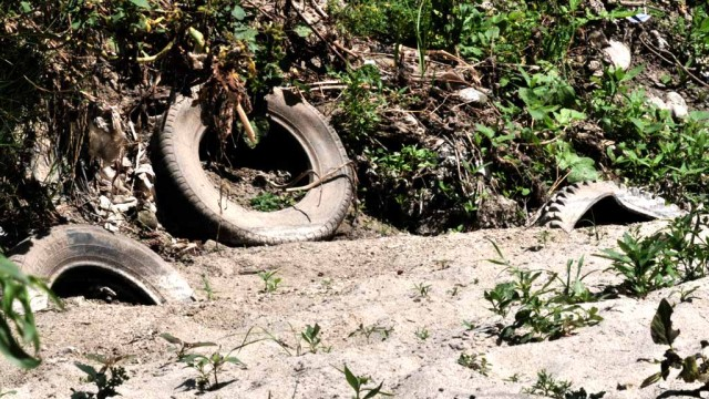 Discarded tires line the Tijuana River bed.