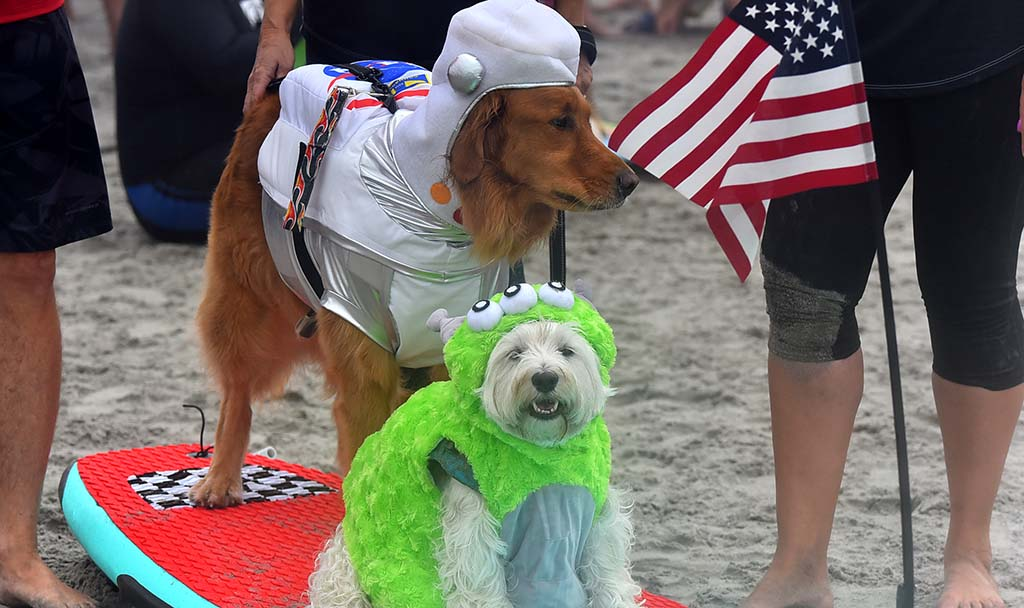 Tristan and Turbo are dressed as an alien and astronaut in the tandem competition.