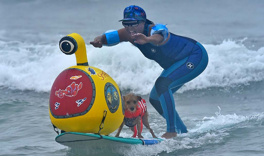 Jill Nakano surfs with her dog Carson at the Helen Woodward Dog Surf-a-thon at Del Mar Beach.