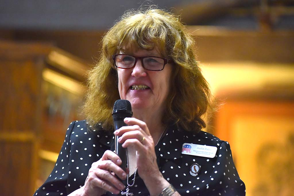Club President Anita Bales oversaw meeting that honored military veterans.