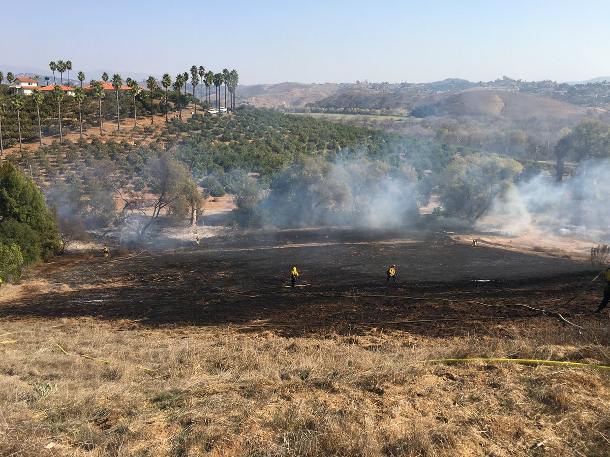 Brushfire Near Bonsall Quickly Halted as Crews Contend with Red Flag Conditions