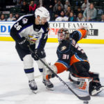 Gulls - Colorado Eagles