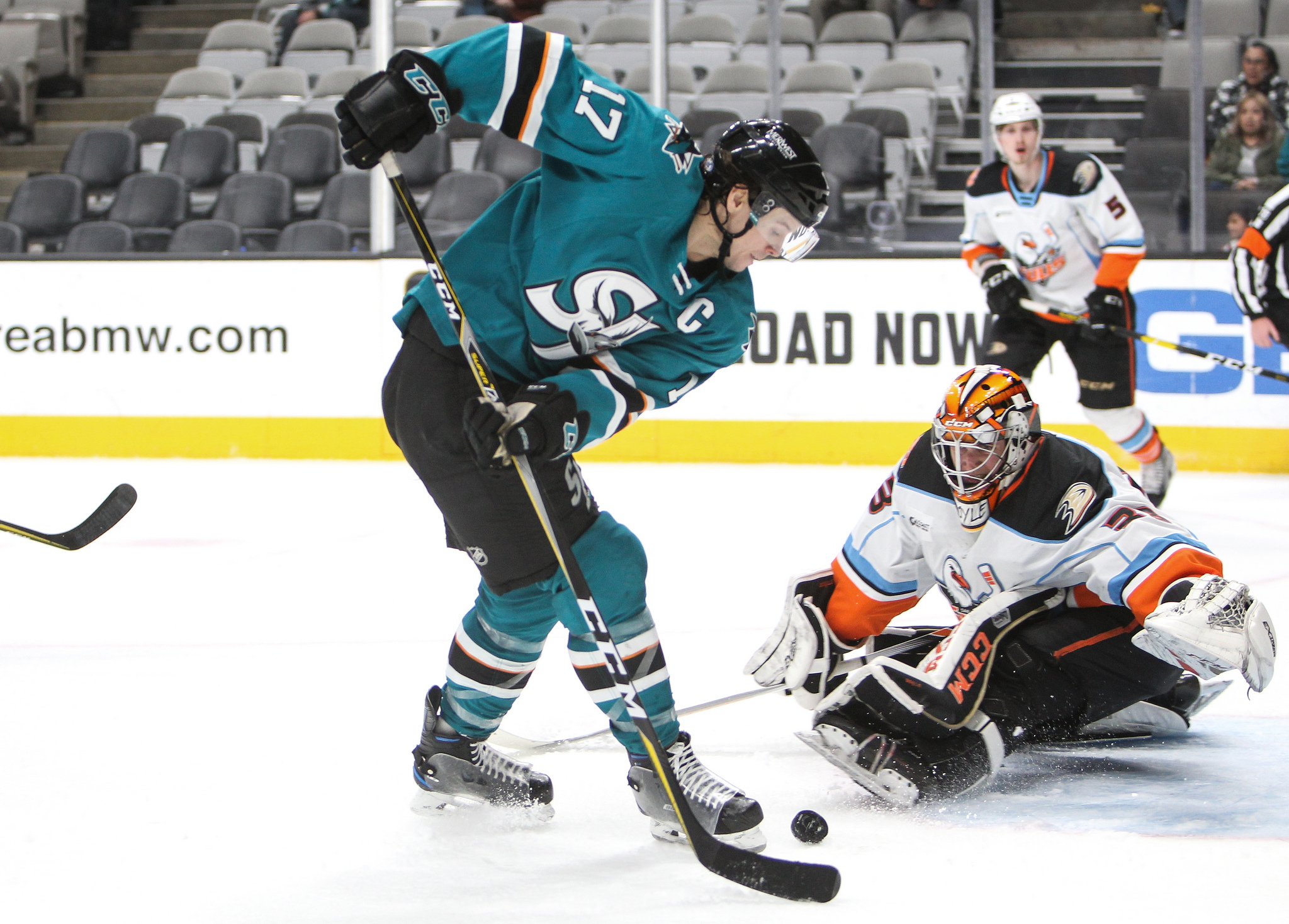 Gulls Down League Leading Barracuda In Decisive Victory Times Of