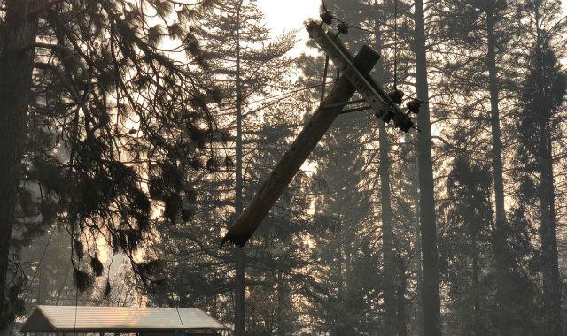 Meinung: das Deaktivieren der Stromzufuhr Verhindert Waldbrände, Sondern Bringt Ältere in Gefahr