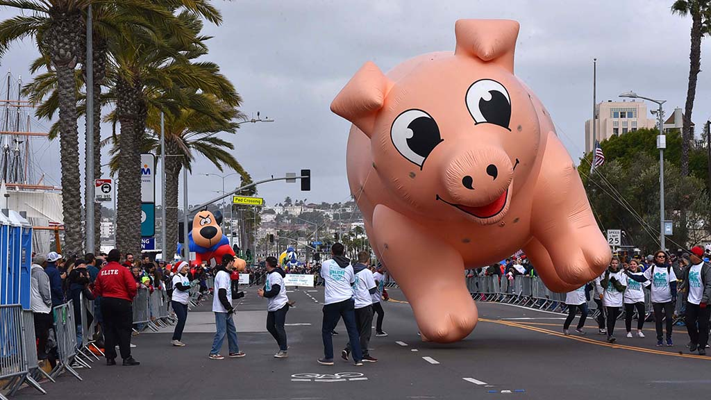 A pig appears tipsy thanks to strong winds on Holiday Bowl Parade route.