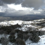 Snow accumulation on Palomar Mountain on Monday afternoon