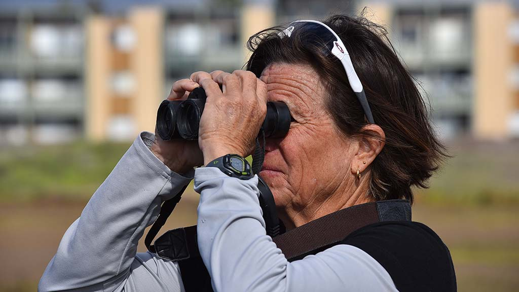 Carol Lord from Bay Park uses binoculars to get a close-up view of birds.