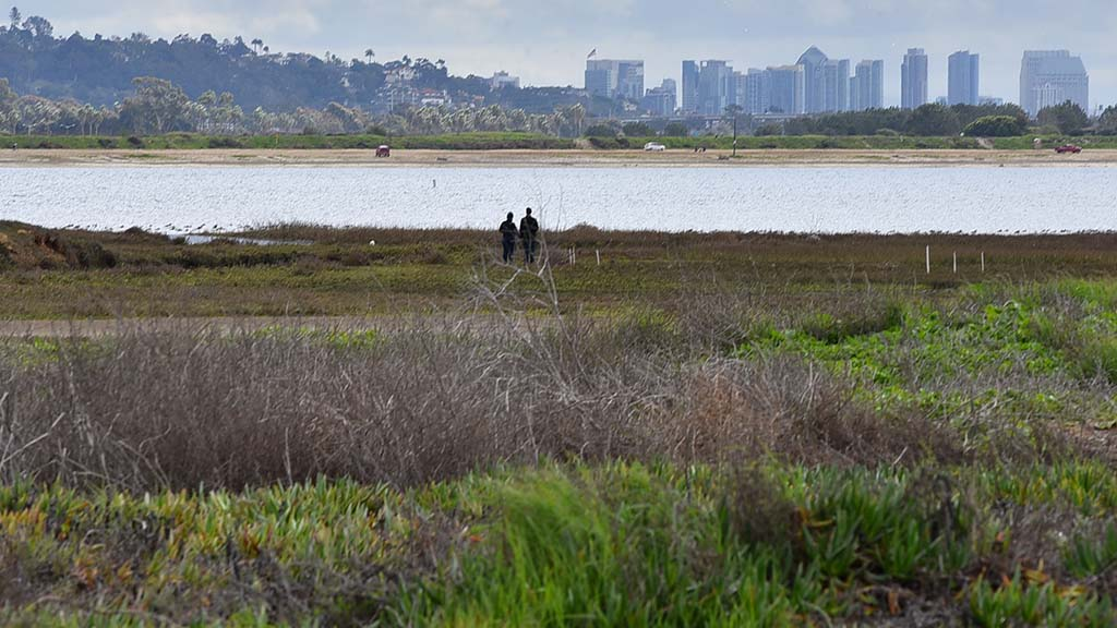 Visitors to the Kendall-Frost Mission Bay Marsh Reserve are allowed on the land only once a year.