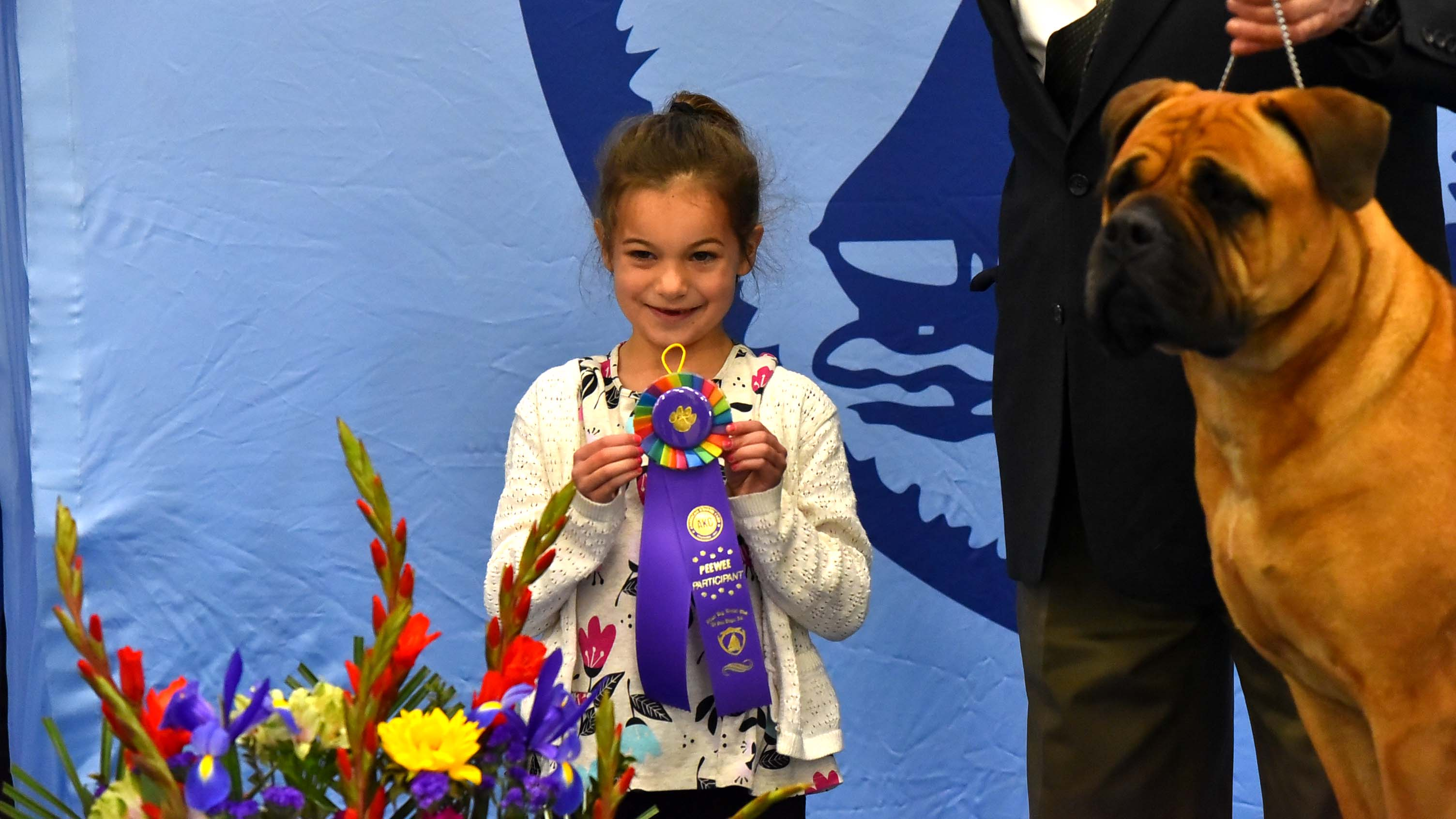 Savannah Mechling, a junior handler of her 140-pound bullmastiff, proudly shows off her ribbon at the Silver Bay Kennel Cub show.
