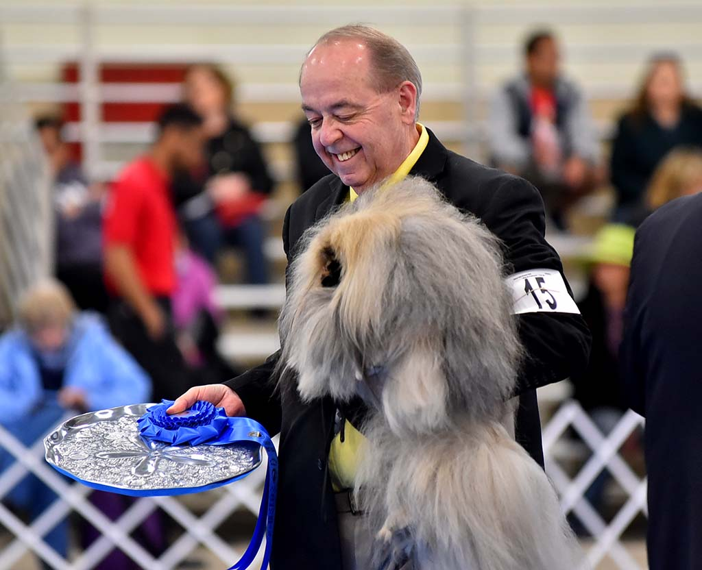 An owner is delighted with the first place win for his Pekingese at the Silver Bay Kennel Club show.