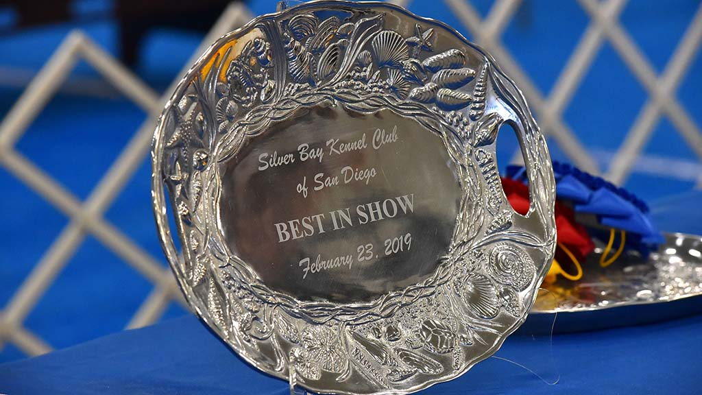 The top winning prize was on display at the Silver Bay Kennel Club show at the Del Mar Fairgrounds.