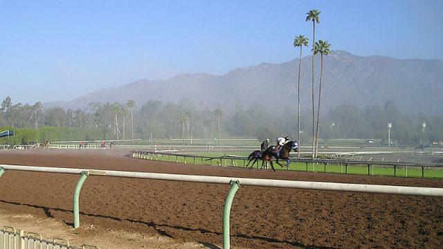 Track at Santa Anita Park
