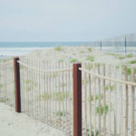 Pedestrian pathway and restored sand dunes