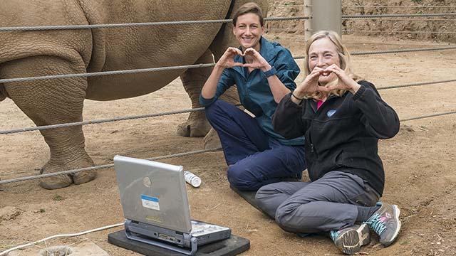 San Diego Zoo Global Academy Beiträge 8 Wochen der Freien Module: 22 Kurse