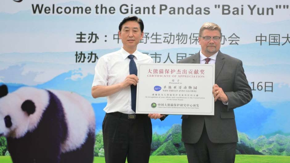 Zhang Haiqing, deputy director of the China Giant Panda Conservation Research Center, presented the Giant Panda Protection Contribution Award to Shawn Dixon of the San Diego Zoo. Photo via center