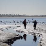 Audubon Society field crew in Kendall Frost Marsh