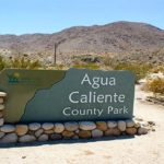Agua Caliente Regional Park in Anza Borrego will be closed until Labor Day.