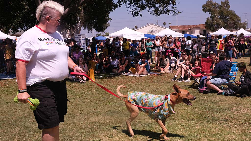 Tristan Higgins of San Diego shows off Rannoch, a four-year-old rescue dog, in the dog fashion contest.