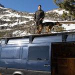 Van liver Travis Wild with his dog, Ayla