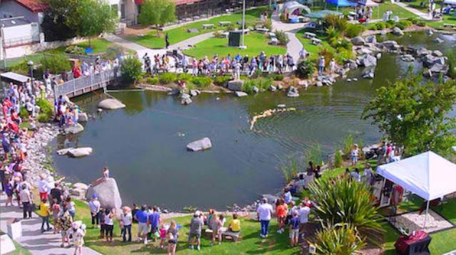 Webb Park in Rancho Bernardo