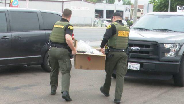 Deputies carry out marijuan