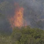 Arson fire in Otay Valley Regional Park
