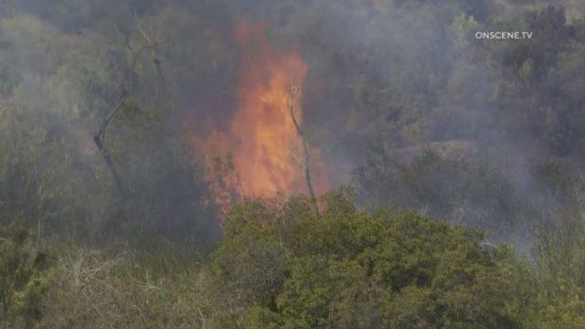 Arson fire in Otay Valley Regional Park