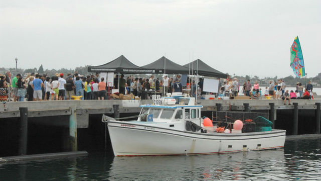 Commercial fishermen at Tuna Harbor Dockside Market