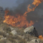 Flames from the Dehesa Fire.