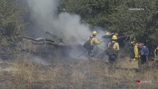 Fire fighting crews.