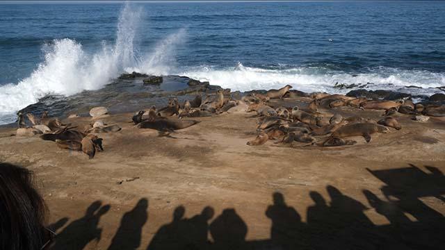 König Gezeiten Explodieren in La Jolla, zu kleineren Überschwemmungen in National City
