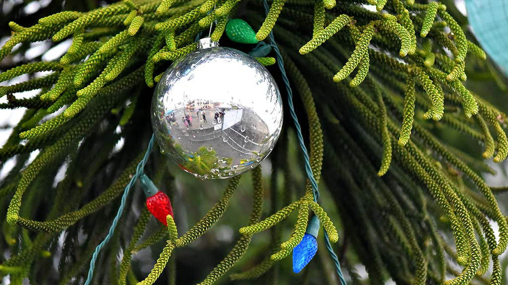 Raindrops cling to an ornament on the Ocean Beach tree. Rain threatened to put a damper on the parade.