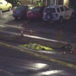 Scene of fatal hit-and-run