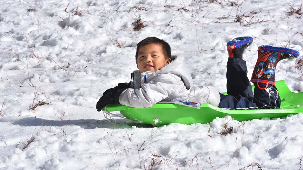 County families raced to play in the snow after chain restrictions were lifted on Sunrise Highway.