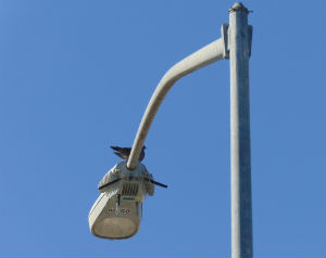 Smart streetlight outside Alpha Project selter