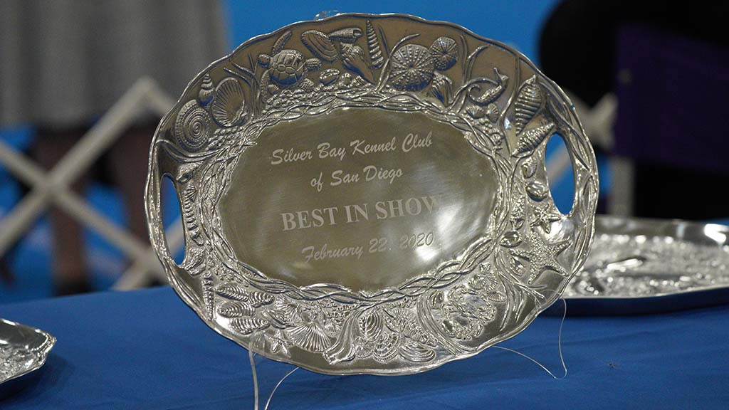 A Best of Show award will be awarded Sunday afternoon.