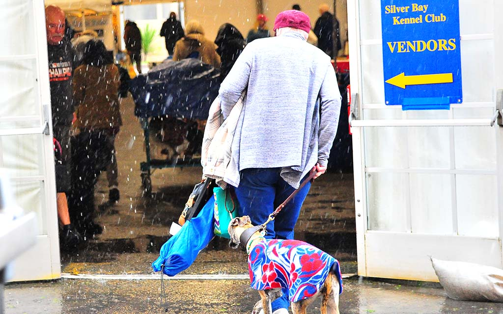 Owners and their dog try to dodge drops as a storm moved through the area in Del Mar.
