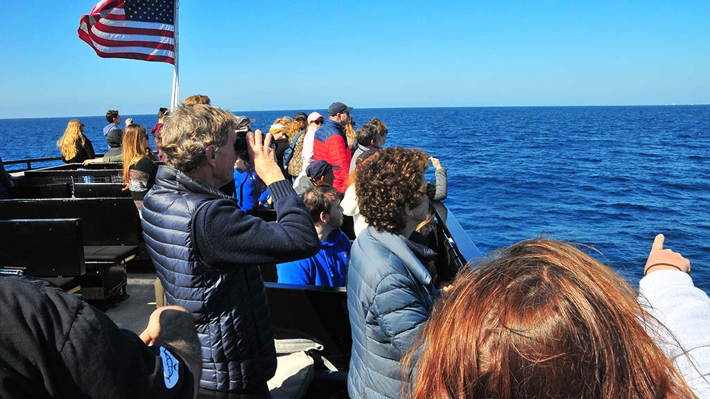Guests use binoculars and point to a spot where a whale spout was seen.
