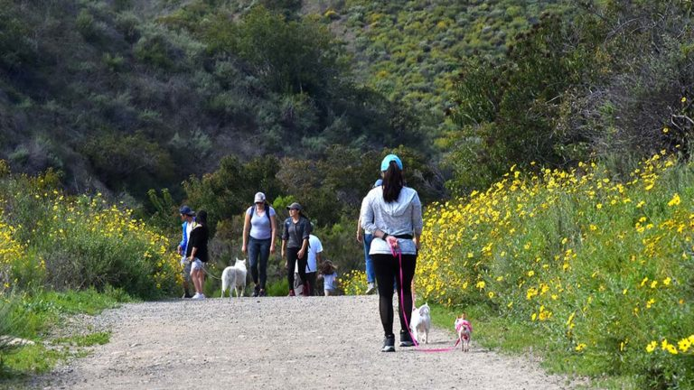 Mission Trails Regional Park was a popular site for people to exercise amid coronavirus restrictions.