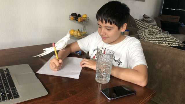 Student using a computer for a math enrichment class at home