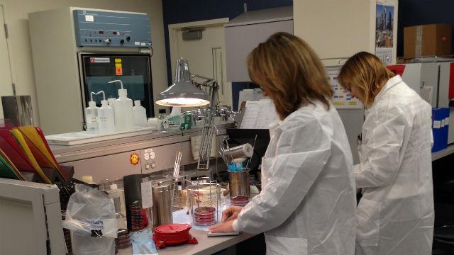 Coronavirus Δοκιμής Αυξάνεται Ραγδαία στην Καλιφόρνια, Αλλά και τα Αποτελέσματα Καθυστέρηση